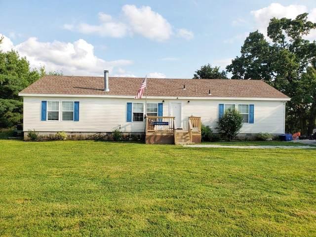 290 Blackberry Lane, Ridgedale, MO 65739 (MLS #60195956) :: Team Real Estate - Springfield