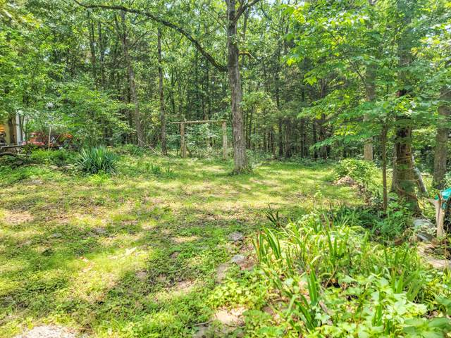22402 County Road 253, Wheatland, MO 65779 (MLS #60196002) :: The Real Estate Riders