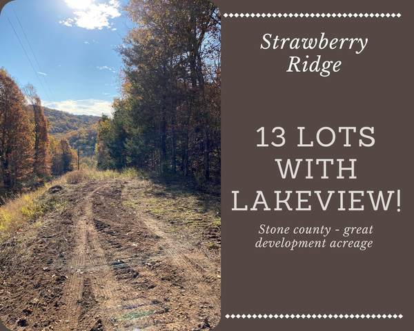 Lot 1-13 Cassie Drive/Strawberry Ridge, Lampe, MO 65681 (MLS #60196072) :: United Country Real Estate