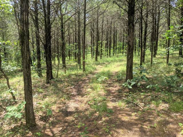 000 Lot 7A New Eagles Trail, Shell Knob, MO 65747 (MLS #60196141) :: The Real Estate Riders