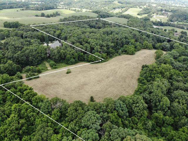000 W St Highway F, Ozark, MO 65721 (MLS #60196236) :: United Country Real Estate