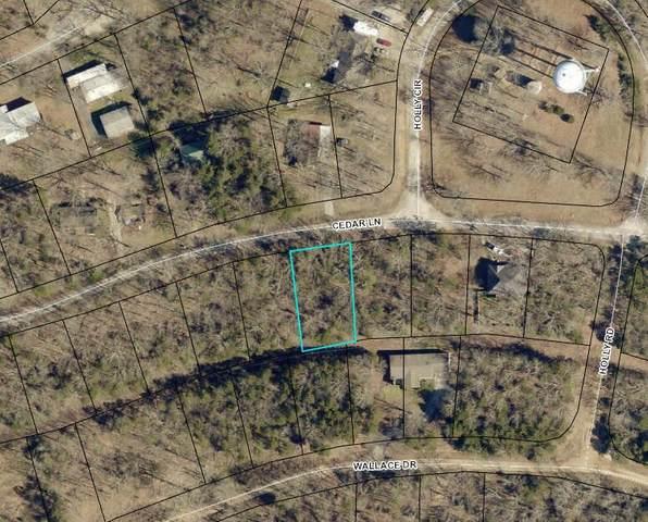 433 Cedar Lane, Merriam Woods, MO 65740 (MLS #60196433) :: Winans - Lee Team | Keller Williams Tri-Lakes