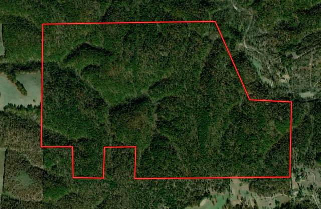 000 E 791 Road, Westville, OK 74965 (MLS #60196448) :: Sue Carter Real Estate Group