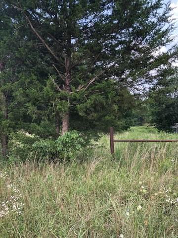 000 County Road 373, Thayer, MO 65791 (MLS #60196461) :: Winans - Lee Team | Keller Williams Tri-Lakes