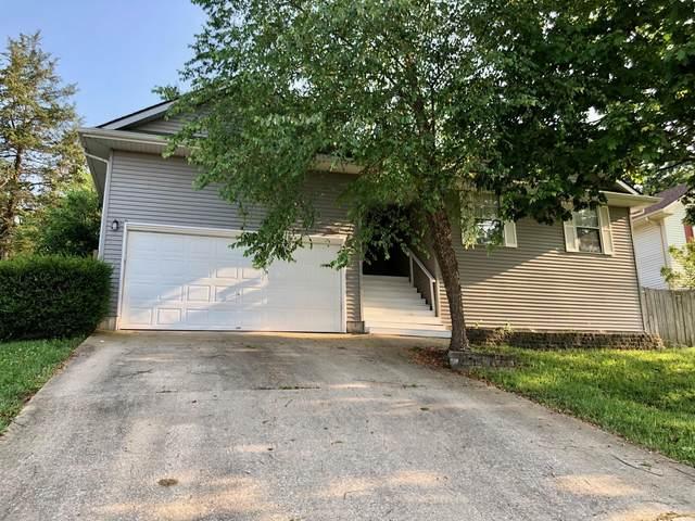 114 Shiloh Street, Branson, MO 65616 (MLS #60196499) :: Lakeland Realty, Inc.