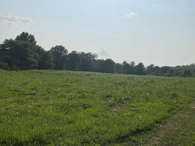 5499 Highway 38, Hartville, MO 65667 (MLS #60196562) :: United Country Real Estate