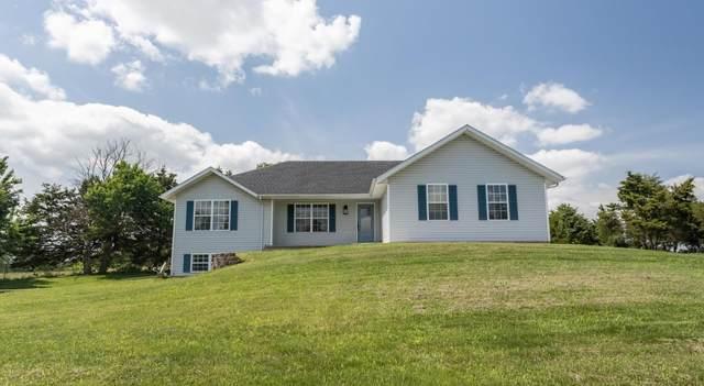 251 Cedar View Lane, Clever, MO 65631 (MLS #60196616) :: Lakeland Realty, Inc.
