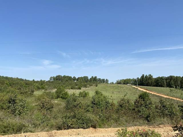 000 County Road 6410, West Plains, MO 65775 (MLS #60196660) :: United Country Real Estate