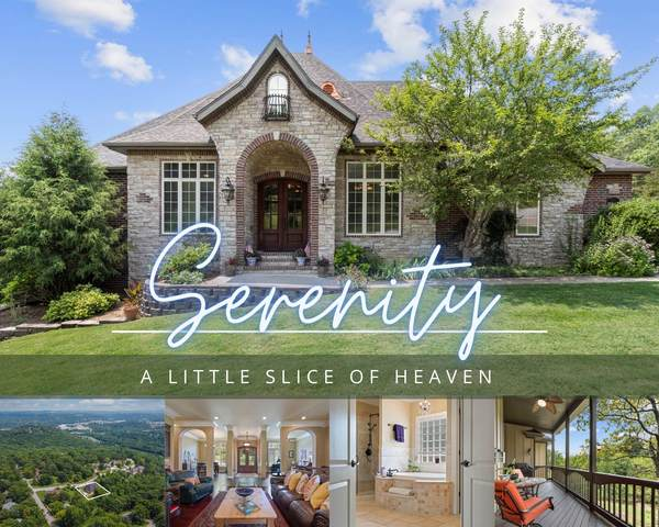 161 South Drive, Branson, MO 65616 (MLS #60196678) :: Sue Carter Real Estate Group