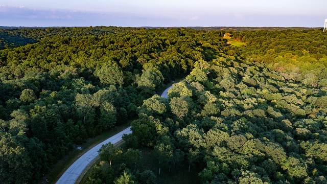 Tbd Hanging Branch Ridge, Cape Fair, MO 65624 (MLS #60196696) :: United Country Real Estate