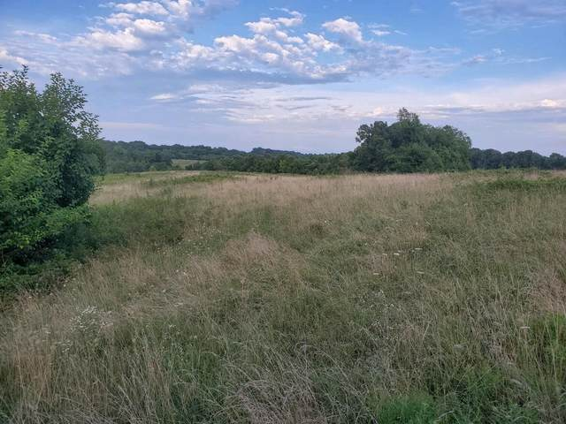000 State Hwy Ff, Galena, MO 65656 (MLS #60196705) :: United Country Real Estate