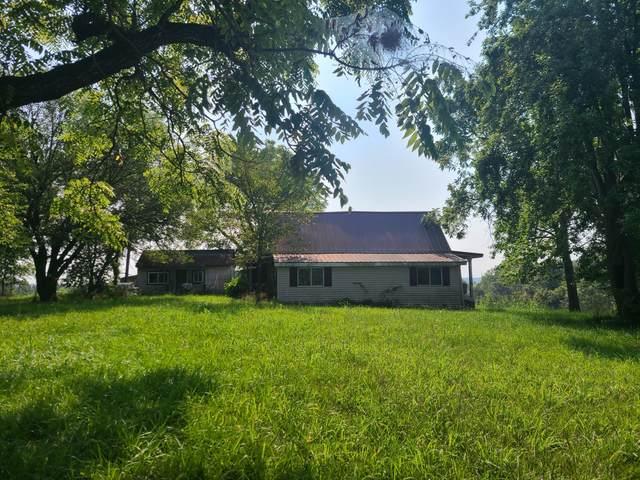 12346 Hicks Lane N, Omaha, AR 72662 (MLS #60196794) :: Evan's Group LLC