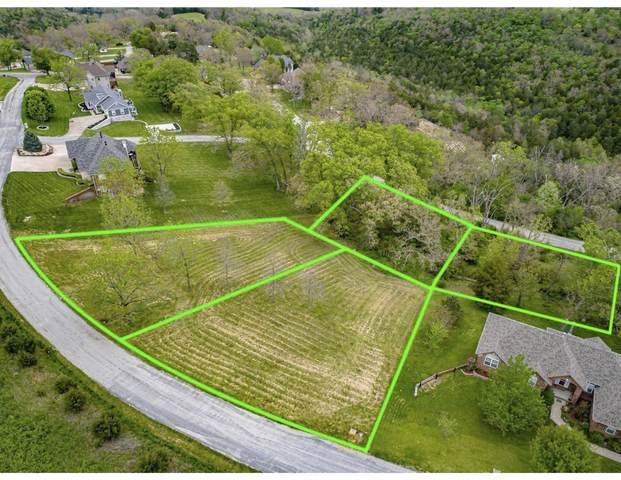 221 Jacks Hollow Road, Walnut Shade, MO 65771 (MLS #60196804) :: Sue Carter Real Estate Group