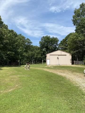 10941 State Road 181, Zanoni, MO 65784 (MLS #60196847) :: Sue Carter Real Estate Group