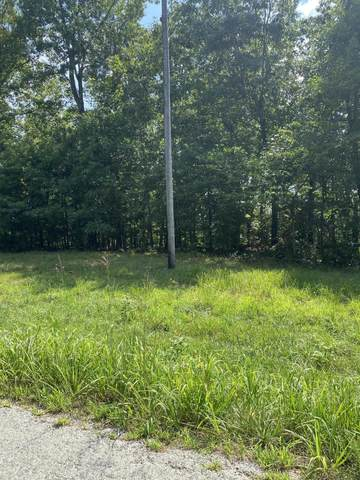 000 State Road Ff, Zanoni, MO 65784 (MLS #60196851) :: Sue Carter Real Estate Group