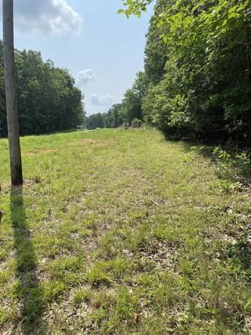 000 State Road 181, Zanoni, MO 65784 (MLS #60196853) :: Sue Carter Real Estate Group