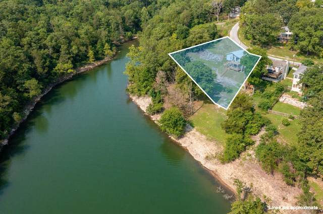 76 Timberview Lane, Blue Eye, MO 65611 (MLS #60196868) :: United Country Real Estate