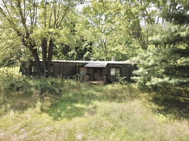 8785 St. George Road, Hartville, MO 65667 (MLS #60196870) :: Team Real Estate - Springfield