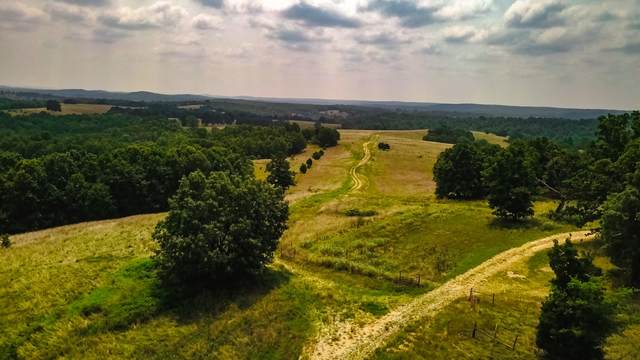 000 Highway V, Myrtle, MO 65778 (MLS #60196915) :: Sue Carter Real Estate Group