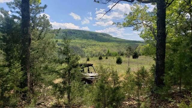 Lot 18 Boulder Hollow, Harrison, AR 72601 (MLS #60196916) :: Sue Carter Real Estate Group