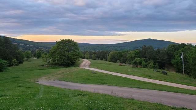 Lot 20 Boulder Hollow, Harrison, AR 72601 (MLS #60196919) :: Sue Carter Real Estate Group