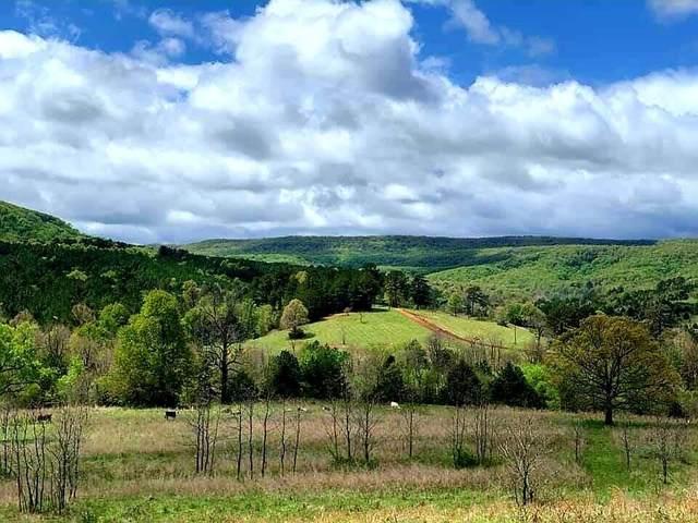 Lot 66 Boulder Hollow, Harrison, AR 72601 (MLS #60196930) :: Sue Carter Real Estate Group