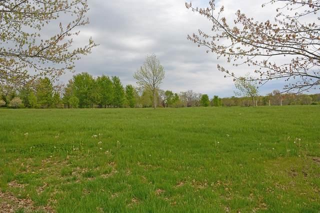 Lot 4 E Crown Park Lane, Springfield, MO 65809 (MLS #60196947) :: Sue Carter Real Estate Group