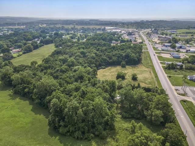 000 Springfield Road, Ava, MO 65608 (MLS #60197055) :: Evan's Group LLC