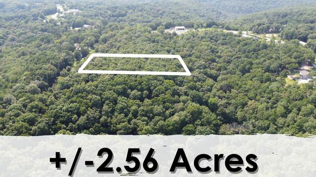 000 Lot 10 Smith Road, Lampe, MO 65681 (MLS #60197070) :: The Real Estate Riders