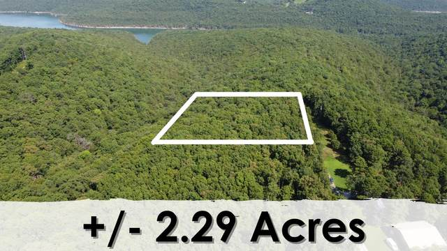 000 Lot 11 Smith Road, Lampe, MO 65681 (MLS #60197072) :: The Real Estate Riders