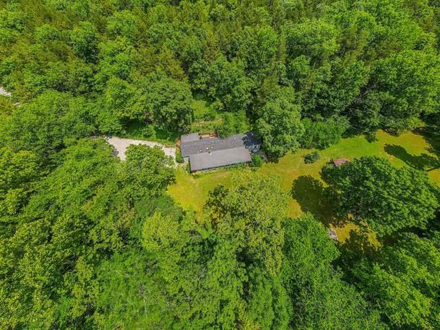 3133 Fall Creek Road, Branson, MO 65616 (MLS #60197160) :: Sue Carter Real Estate Group