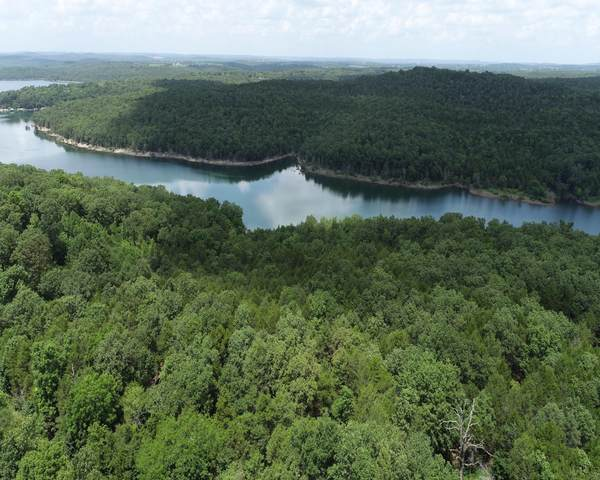 000 County Road 644, Theodosia, MO 65761 (MLS #60197228) :: Winans - Lee Team | Keller Williams Tri-Lakes