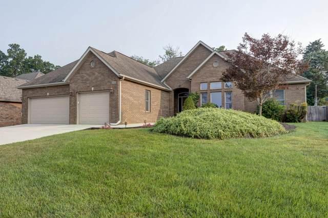 2505 E Olde Ivy Street, Springfield, MO 65804 (MLS #60197342) :: Team Real Estate - Springfield