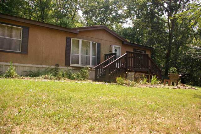 634 Black River One Drive, Piedmont, MO 63957 (MLS #60197361) :: Team Real Estate - Springfield