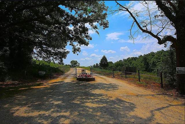 Lot 26 Riverside Ridge Estates, Mammoth Spring, AR 72554 (MLS #60197393) :: Sue Carter Real Estate Group