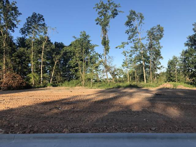 6070-Lot 29 S Maryland Avenue, Springfield, MO 65804 (MLS #60197428) :: Tucker Real Estate Group   EXP Realty