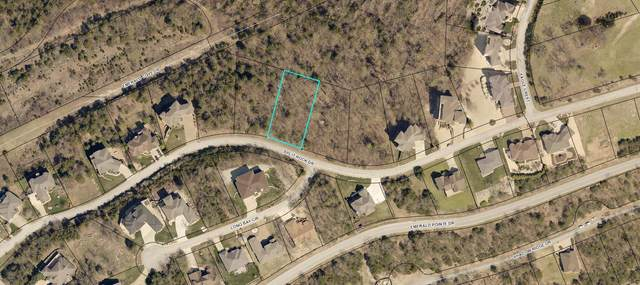 245 Split Rock Drive, Hollister, MO 65672 (MLS #60197446) :: The Real Estate Riders