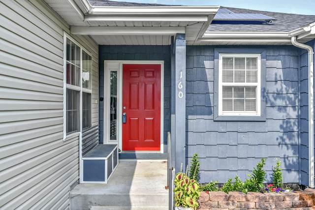 160 Sapling Drive, Branson, MO 65616 (MLS #60197469) :: Tucker Real Estate Group | EXP Realty