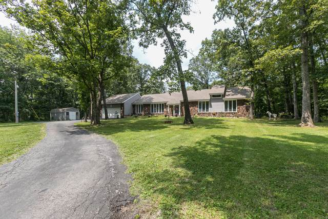 594 Autumn Circle, Rogersville, MO 65742 (MLS #60197583) :: The Real Estate Riders