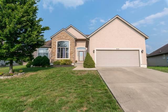 828 S Cobble Creek Boulevard, Nixa, MO 65714 (MLS #60197702) :: Team Real Estate - Springfield