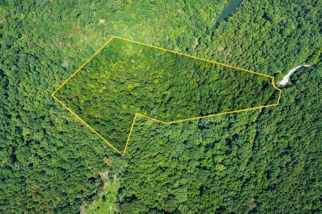 Lot 5A1A Grayson Glen, Lampe, MO 65681 (MLS #60197767) :: Lakeland Realty, Inc.