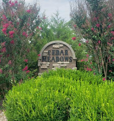 460 Cedar Meadows Lane Lane, Branson, MO 65616 (MLS #60198024) :: Evan's Group LLC