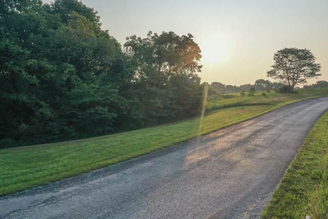 000 Hidden Springs Lot 15, Reeds Spring, MO 65737 (MLS #60198062) :: Sue Carter Real Estate Group