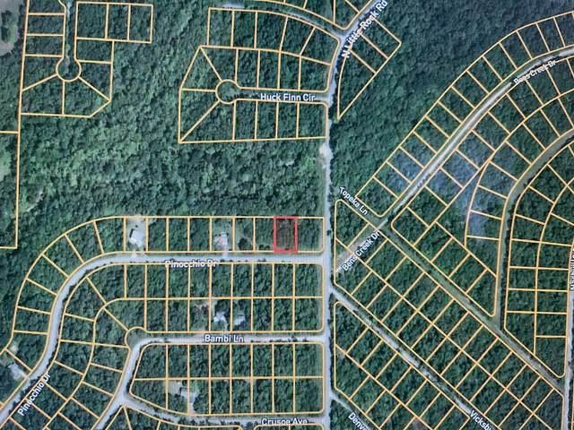 1006 E Pinocchio Drive, Horseshoe Bend, AR 72512 (MLS #60198079) :: Sue Carter Real Estate Group