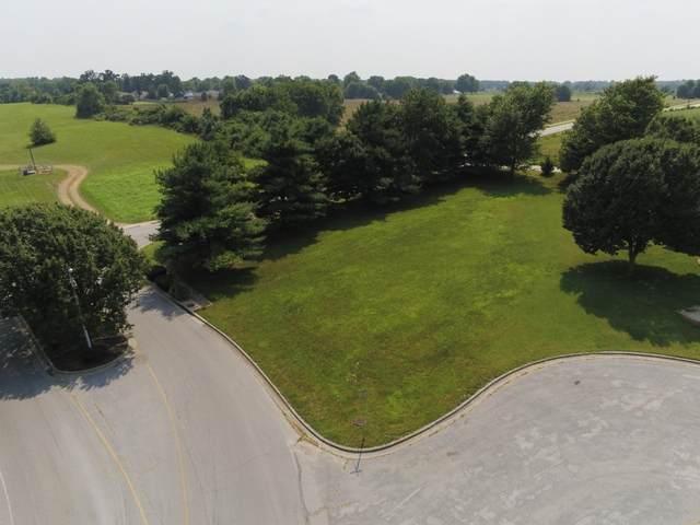 Lot 1 Raven Circle, Rogersville, MO 65742 (MLS #60198144) :: Sue Carter Real Estate Group