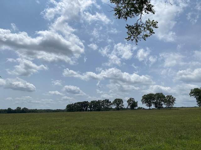 956 County Road 2470, Salem, MO 65560 (MLS #60198167) :: Clay & Clay Real Estate Team