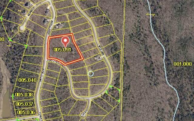 Lot 91-94 Forest Lake Drive, Branson West, MO 65737 (MLS #60198542) :: Sue Carter Real Estate Group