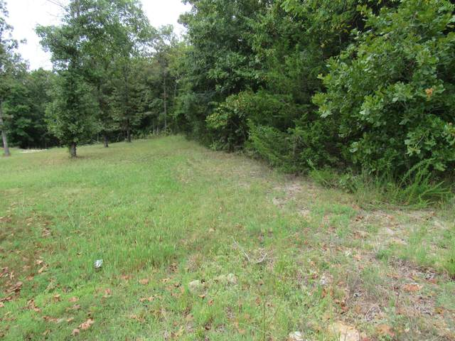 Tbd Schodack Road, Lampe, MO 65681 (MLS #60198770) :: Sue Carter Real Estate Group