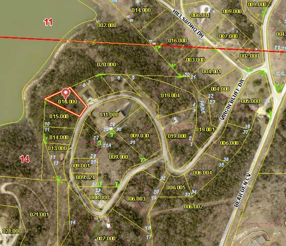 Lot 9 Virgin Bluff Drive, Galena, MO 65656 (MLS #60198778) :: Sue Carter Real Estate Group