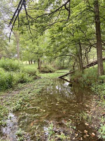 000 Route H, Greenfield, MO 65661 (MLS #60198848) :: Clay & Clay Real Estate Team